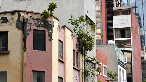 Something Old in DF 19 October 2014 (3)