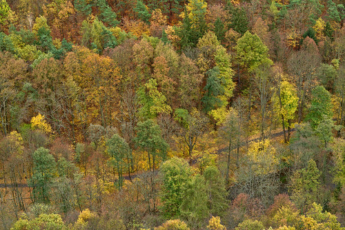badblankenburg deutschland landschaft wald autumn fall herbst trees bäume darktable schwarzatal thuringia thüringen