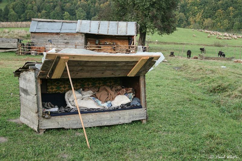 Shepherd's sleeping hut