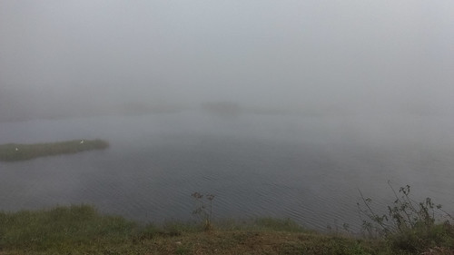 fogandmist india karnataka kogilukere lakes natureandenvironment subject water weather what