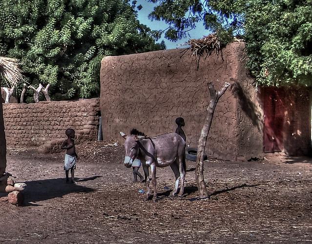 Gosses d'Afrique