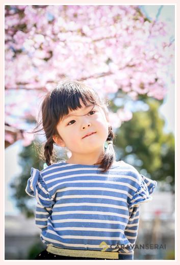 桜の花の下で おさげ髪の女の子 ボーダーのTシャツ
