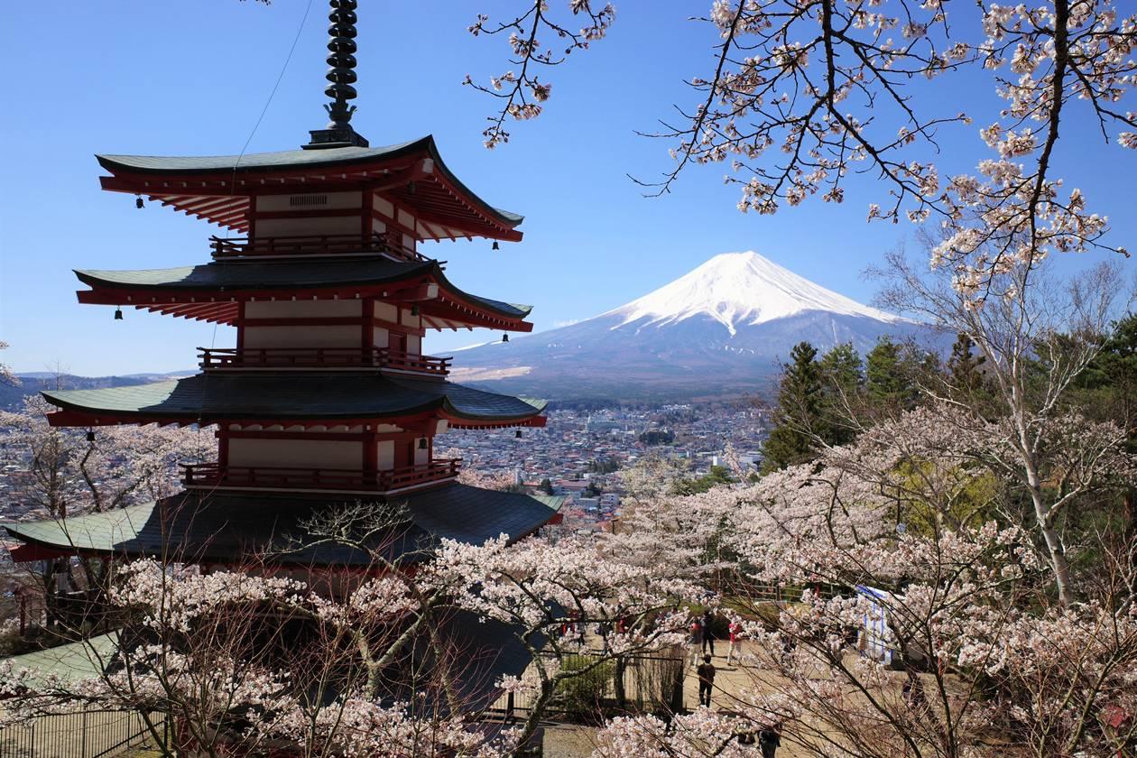 桜と富士山と五重塔