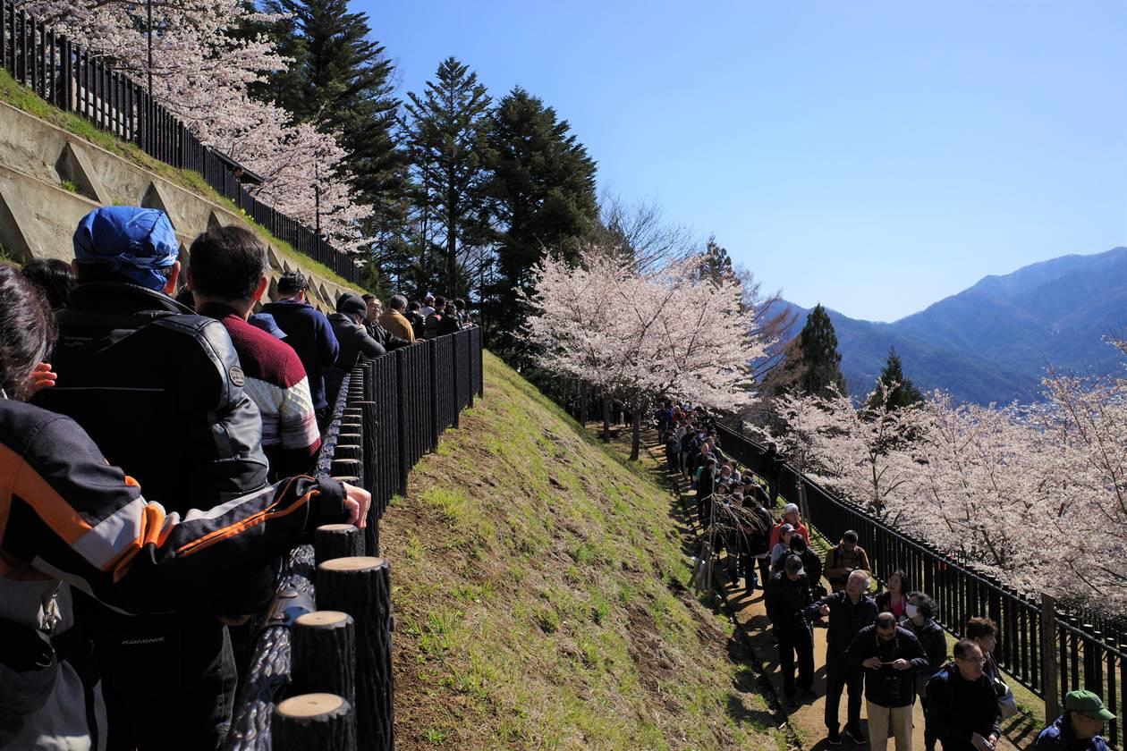 新倉山浅間公園 五重塔展望台の待ち行列