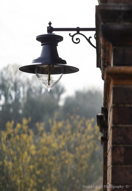 Chapel Lamp.