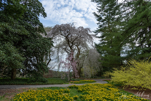 LongwoodGardens_04_13_2019_DSC-3846 | by Jeff Adukinas Photography