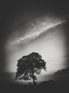 Escuridão   by Adriano dos Santos Lopes