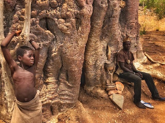 Niña Somba o Tamberma en un baobab sagrado (País Somba, Togo)