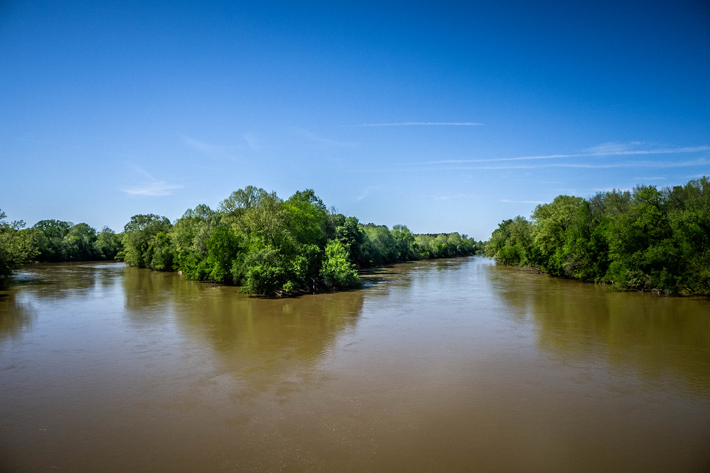 Exploring the Broad River with Scott Withrow