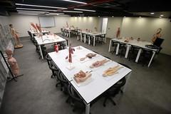 Prof. Dr. Nurettin Ali BERKOL Anatomi Maket Laboratuvarı 5