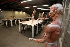 Prof. Dr. Nurettin Ali BERKOL Anatomi Maket Laboratuvarı 4