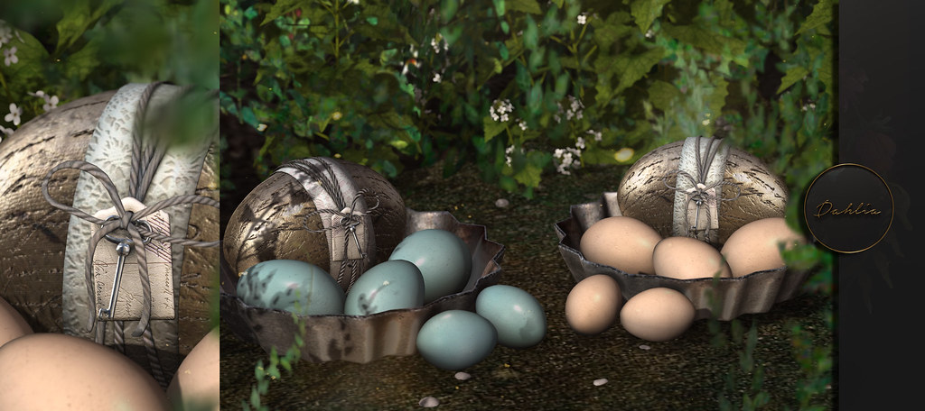 Dahlia – Peter's Eggs – Group Gift