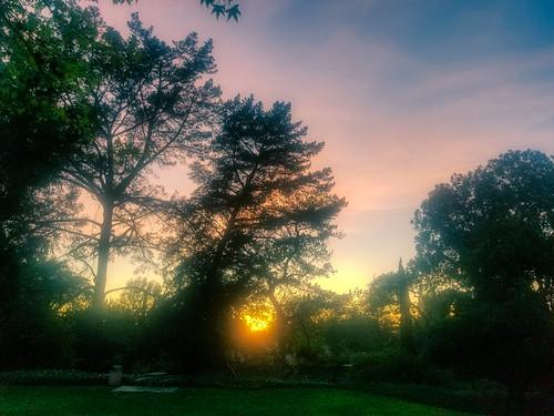 sunset landscape smartphone galaxys8