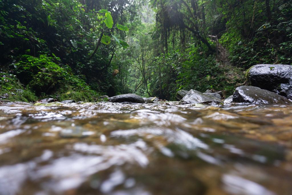 Pure water in Mashpi Lodge