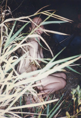 hiding in the bushes