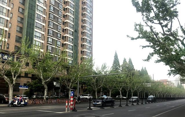 玉書在上海徐匯區 (3)