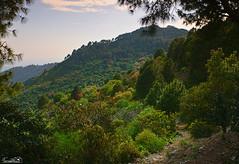 Colors of Margalla Hills, Islamabad, Pakistan