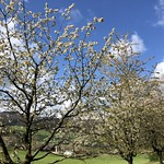 2019-04-17 Schwarzbuebeland_Fred (28)