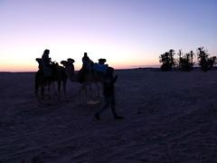 atardecer ruta en camellos al Desierto del Sahara Douz Tunez 05