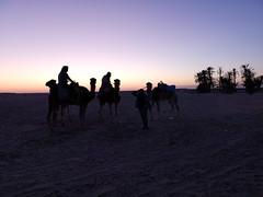 atardecer ruta en camellos al Desierto del Sahara Douz Tunez 04