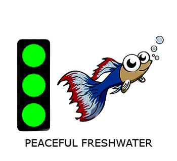 PEACEFUL FRESH