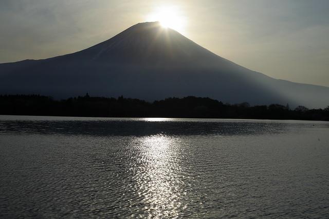 Lake Tanuki of the morning