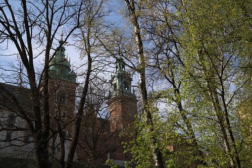 Uroczystość Zmartwychwstania Pańskiego w Katedrze Wawelskiej | Abp Marek Jędraszewski, 21.04.2019 r.
