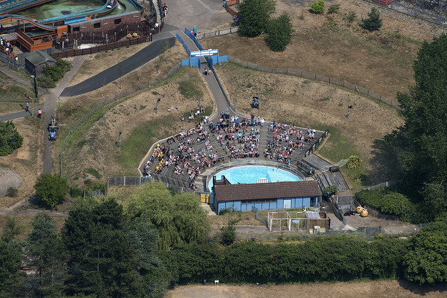 The Sea Lion show at Pleasurewood Hills in Suffolk - aerial view