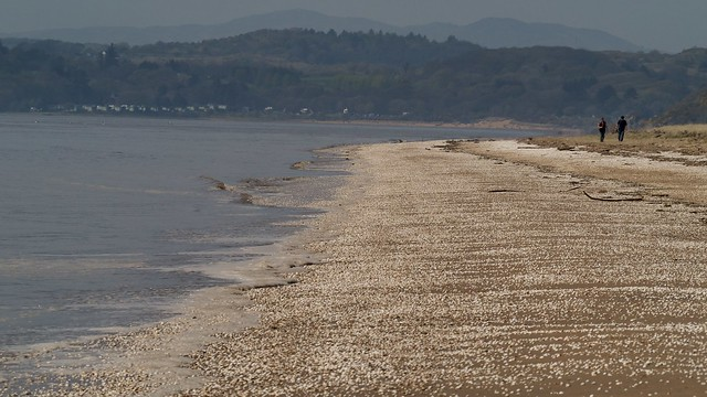 Meresehead beach