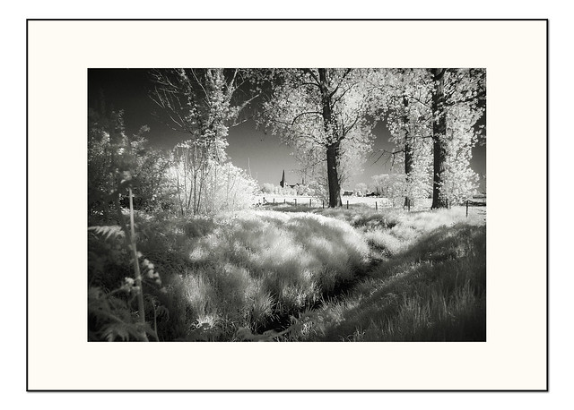Landscape beauty -  infrared 01