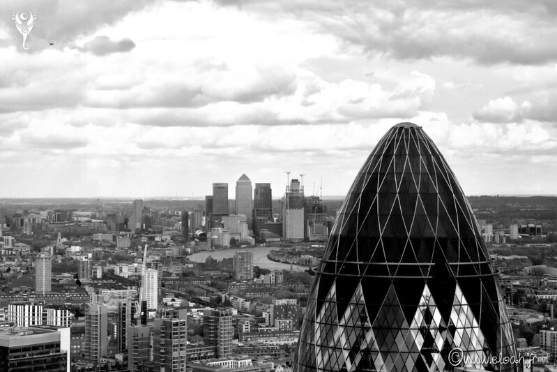 The Gherkin view on Canary Wharf