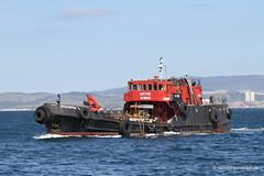 Ship. Dragonfish 4903248