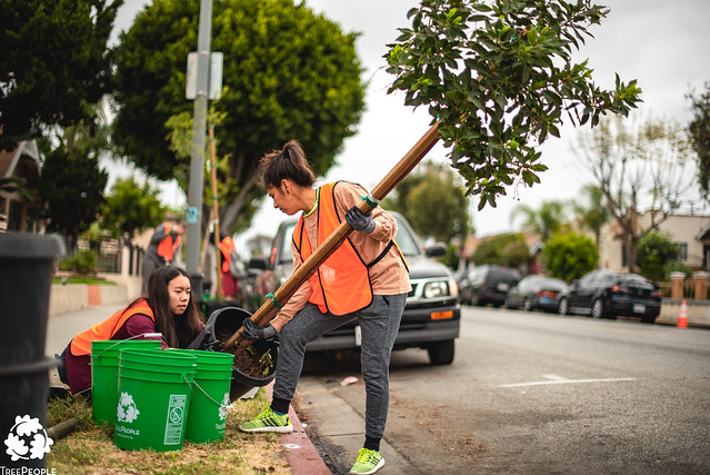 Huntington Park Tree Planting - Earth Day 2019