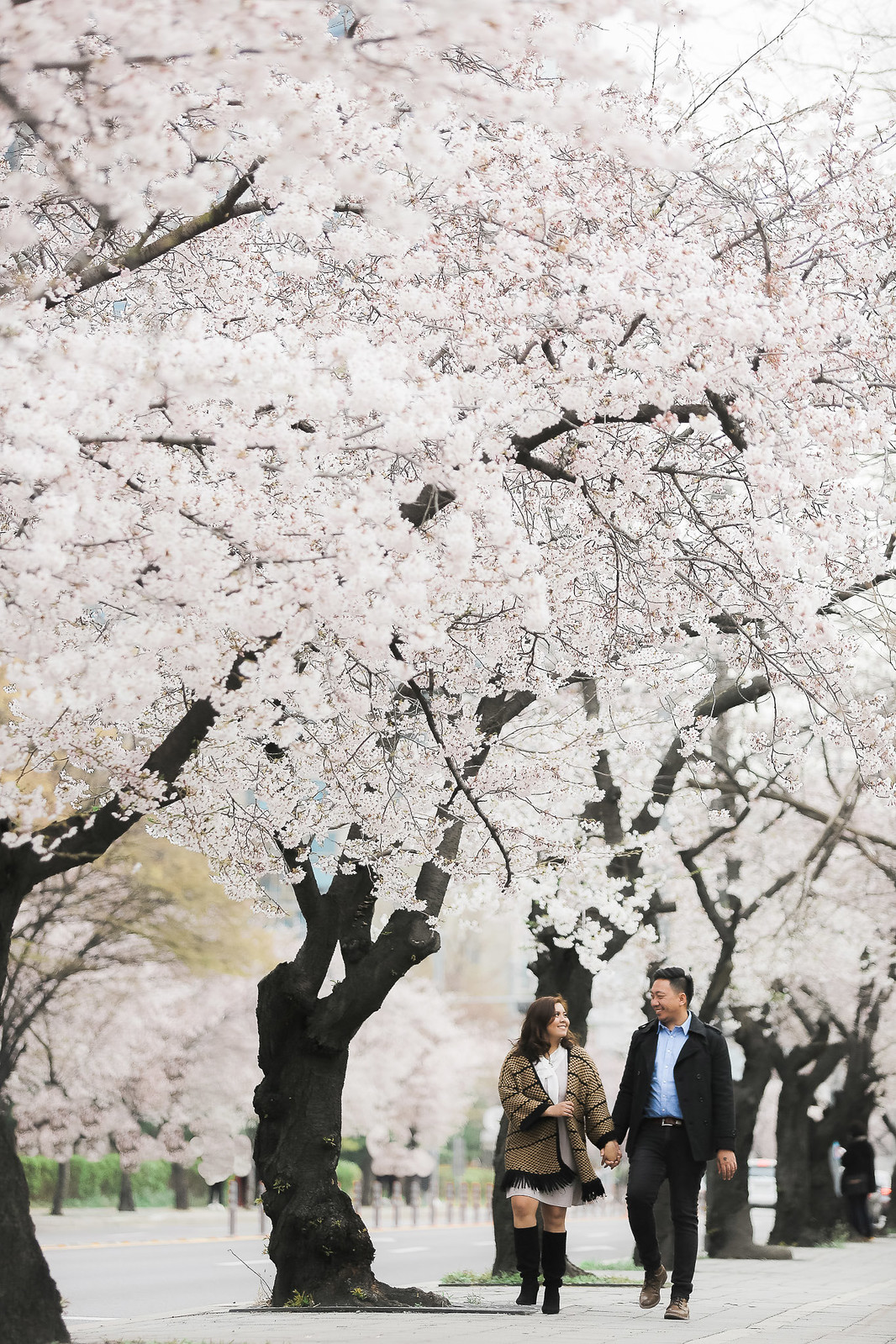 SOUTH KOREA PRENUP_ (44)