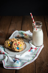 moster-cookies-0240