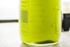 Agência UFC - Pesquisa com algas para purificação de água | Foto: Ribamar Neto