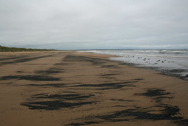 The beach at Redcar