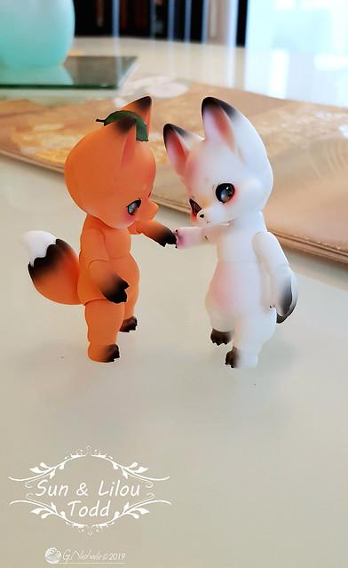 ✰ Ma famille de kitsune (p. 20) - Page 20 32756633807_664f5d93ef_z