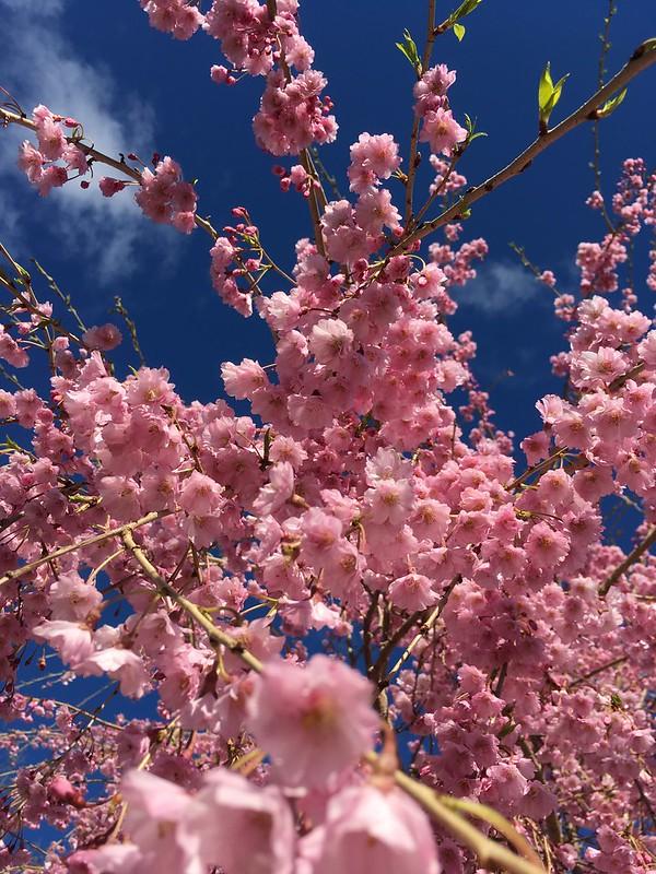 Outside in April