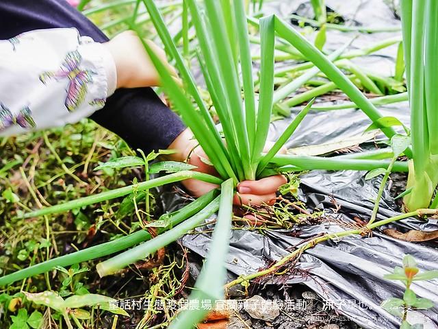 童話村生態渡假農場 宜蘭親子體驗活動 5