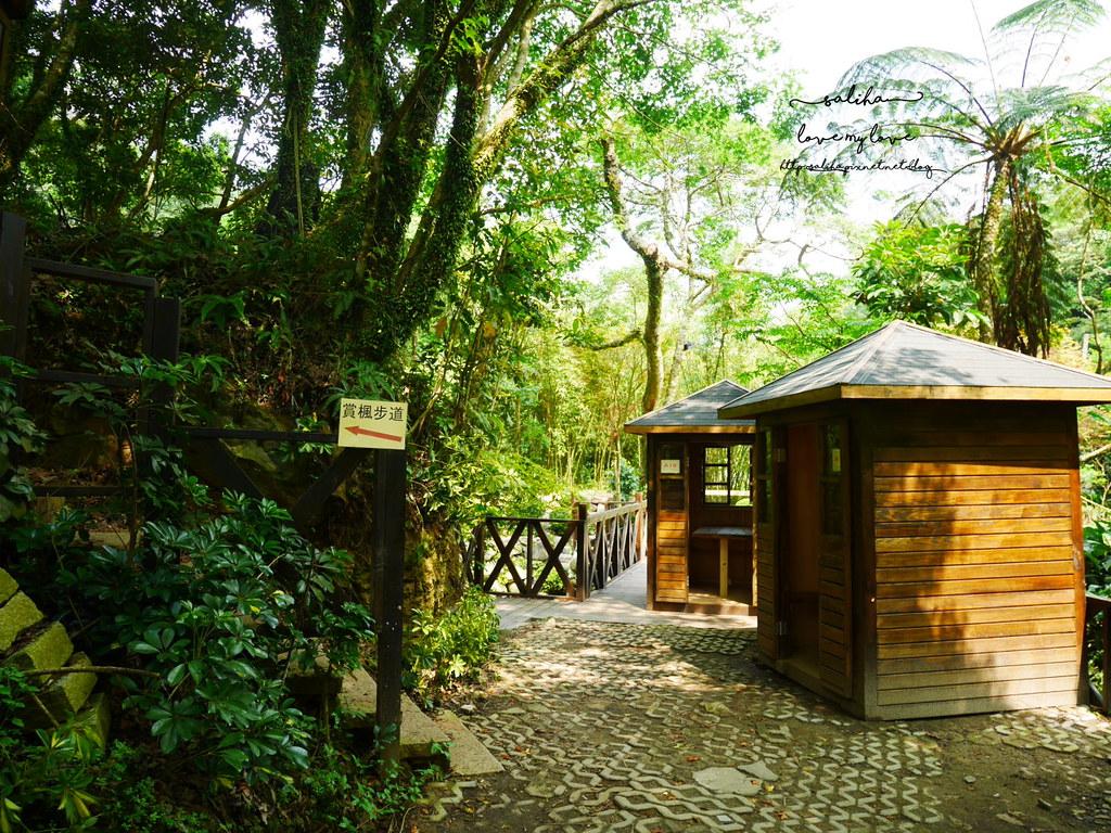 陽明山一日遊ig打卡景點推薦台北奧萬大楓葉季景觀餐廳親子戲水 (5)