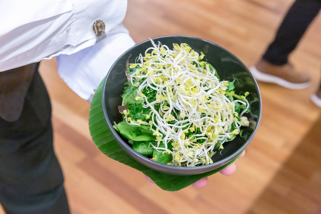 "Waiter serves the ""Vegan bowl"" with sprouts, at Barcamp OMWest 2019 by AXA, in Cologne, Germany"