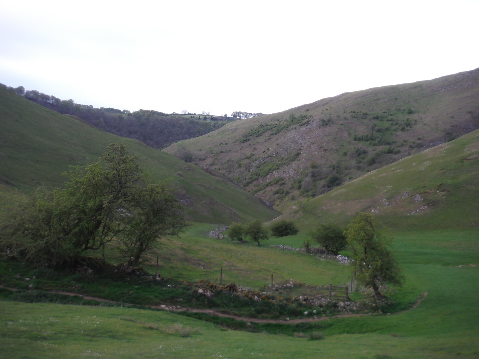 Lin Dale SWC Walk 326 - Dovedale (Ashbourne Circular)