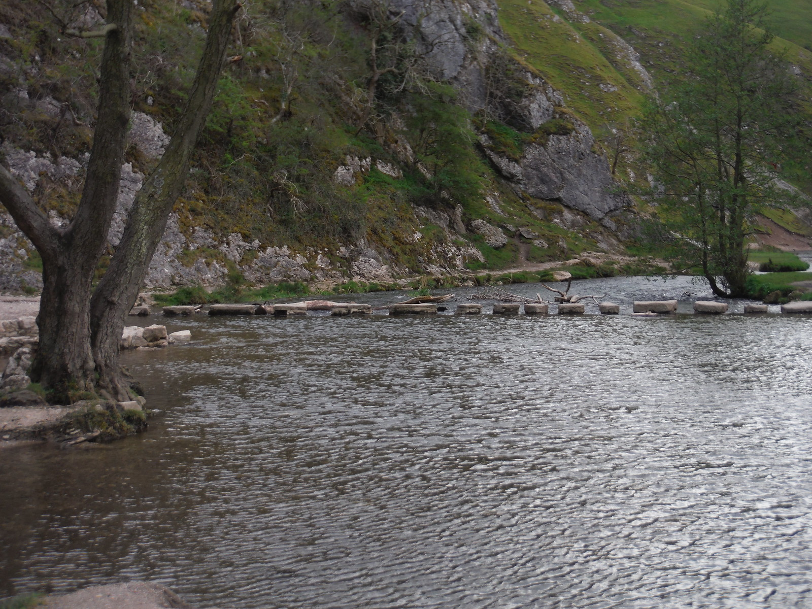 The Stepping Stones, Dovedale SWC Walk 326 - Dovedale (Ashbourne Circular)