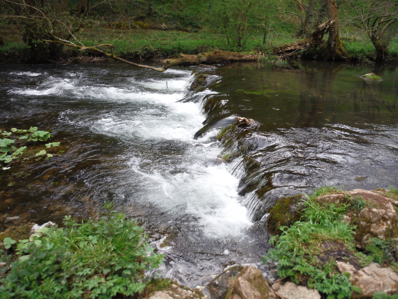 Weir in The Dove SWC Walk 326 - Dovedale (Ashbourne Circular)
