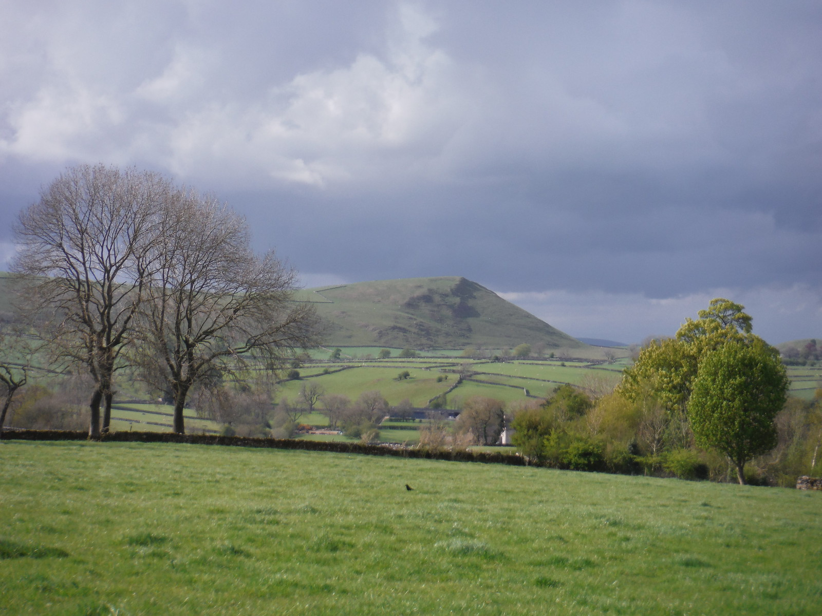 Wetton Hill, from near Grove Farm, Stanshope SWC Walk 326 - Dovedale (Ashbourne Circular) [Long Version via Alstonefield]
