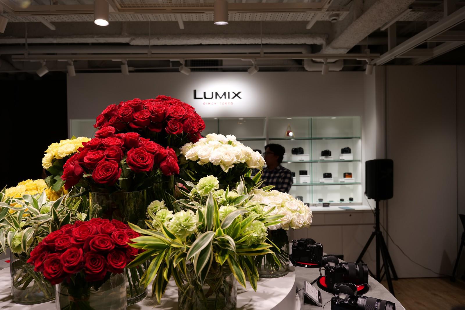 Panasonic LUMIX S1 - LUMIX S 24-105mm F4 MACRO O.I.S. - @ 24mm / F4
