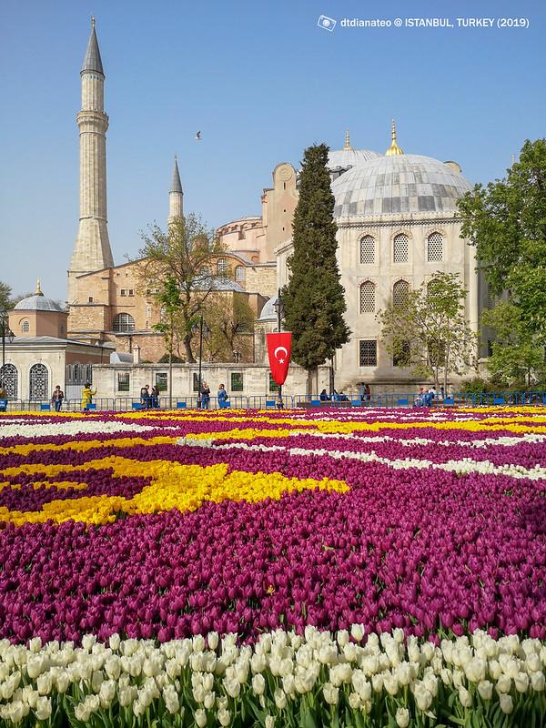 2019 Turkey Istanbul 091