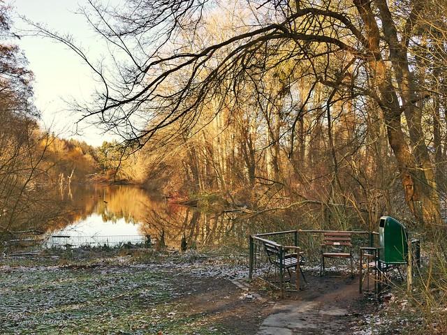 Berlin - Volkspark Rehberge