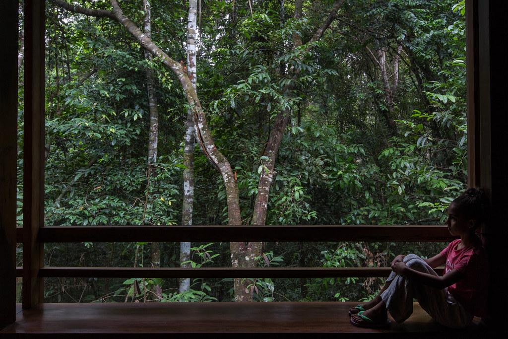 20190427 Amazonas - Anavilhanas National Park 006.jpg